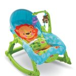 Fisher Price Wunderwelt 2in1 Schaukelsitz Deluxe