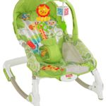 Fisher-Price 2-in-1 Kompakt-Schaukelsitz